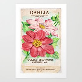 Dahlia Seed Packet Art Print