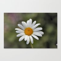 lonely Canvas Prints featuring Lonely by IowaShots