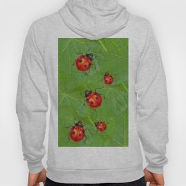 RED LADY BUGS ON GREEN LEAVES DESIGN ART Hoody