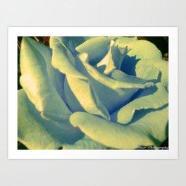 Send My Love To Rose Art Print