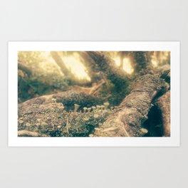 minishrooms Art Print