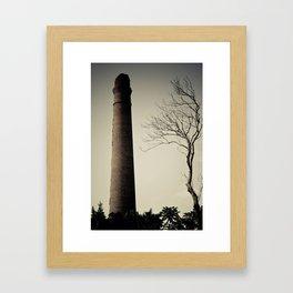 Chachuaco Framed Art Print