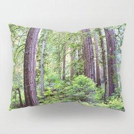 The Light Through the Woods Pillow Sham