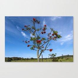 Prickly Tree Canvas Print
