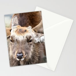 Oh my Deerling ! Stationery Cards