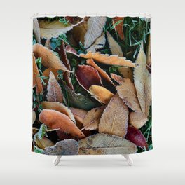 frosty mornings Shower Curtain