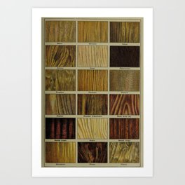 Wood Grain Chart Art Print
