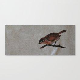 A red Bird Canvas Print