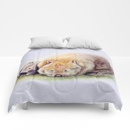 Itchascratch Comforters