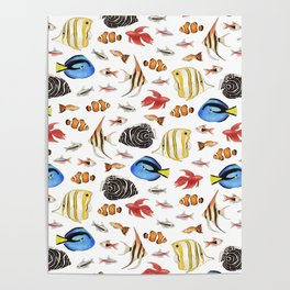 Tropical Fish on White - pattern Poster