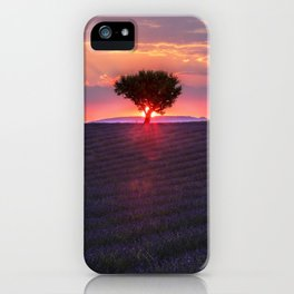 Lavender sunset in Valensole iPhone Case
