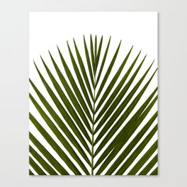 Bamboo - Tropical Botanical Print Canvas Print