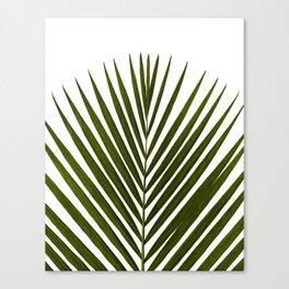 Bamboo - Tropical Botanical Print Canvas Print