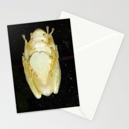 Underbelly The Soft Underside or Abdomen Of A Tree Frog Stationery Cards