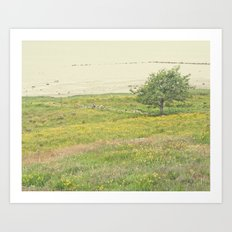 The summer tree Art Print