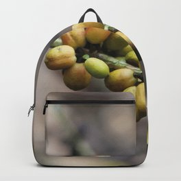 Illustration Coffee Beans Backpack