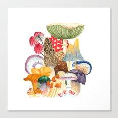 Woodland Mushroom Society Canvas Print