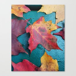 WithrowLeaves Canvas Print