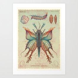 Danaus venus nox Art Print