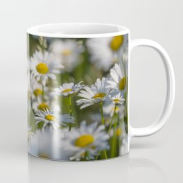 Daisies meadow in the summer Coffee Mug