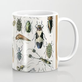 Adolphe Millot- Vintage Insect Print Coffee Mug