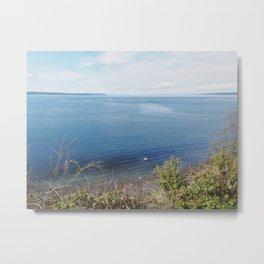 Lake Beach Metal Print