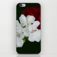 Geranium as art iPhone & iPod Skin