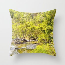 The Edge of the River Throw Pillow