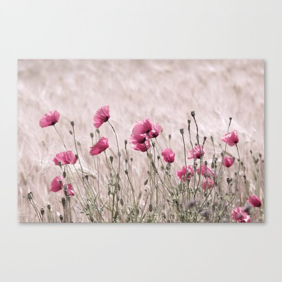 Poppy Pastell Pink Canvas Print