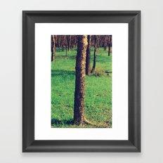 Silvan Framed Art Print