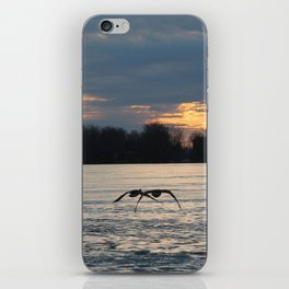 Geese in Flight iPhone Skin