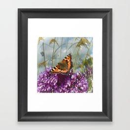 Butterfly Days Framed Art Print