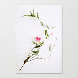 Eucalyptus Sway Canvas Print