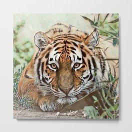Toony Tiger Metal Print