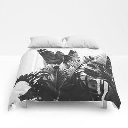 No. 6 Comforters