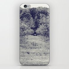 apple orchard iPhone & iPod Skin