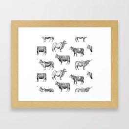 Bodacious Bovines Framed Art Print