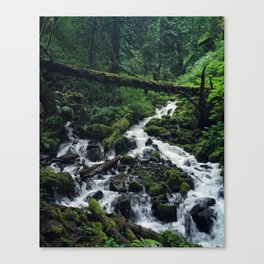 Wahkeena Falls Hike Canvas Print