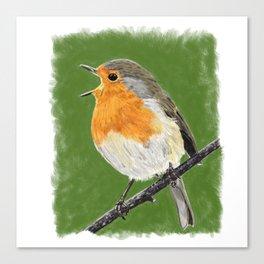 Robin 02 Canvas Print