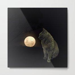 Moon cat Metal Print