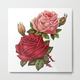 Roses Are Red And Pink... Metal Print