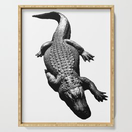 Alligators Love to Swim Serving Tray