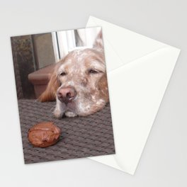 Control... Stationery Cards
