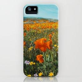 California Wildflower Poppy Superbloom iPhone Case