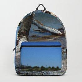 Driftwood Backpack