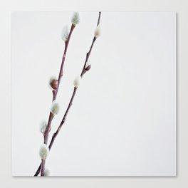tuck floral 5 Canvas Print