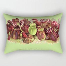 Cephalotus Follicularis (Albany Pitcher Plant)  Rectangular Pillow