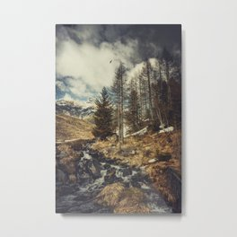 Mountain spring Metal Print