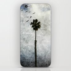 Palm Tree Birds iPhone & iPod Skin