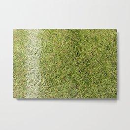 Chalk Line in Grass Metal Print